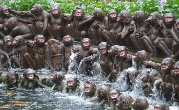 Kong Kow = Monyet gaul (Kow = bahasa Cina tidak formal artinya main